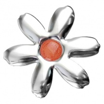 Ecodome flor